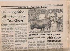 stock and land article woodbourn